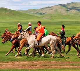 Eco voyage en Mongolie - Festivals