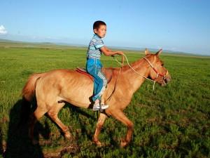 Circuit-de-la-fete-Naadam-2015-en-mongolie1