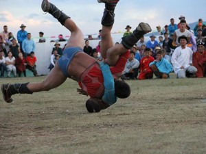 Circuit-de-la-fete-Naadam-2015-en-mongolie5