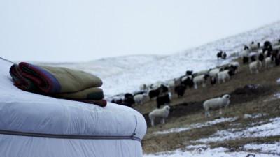 Bouddhisme d'hiver : un incroyable pèlerinage annuel !