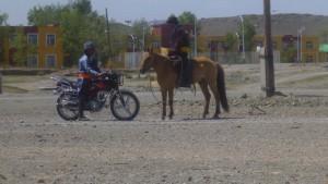 Séminaire d'été en Mongolie : « Se connecter à sa nature profonde »