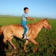 voyage-en-mongolie-au-fil-des-yourtes-a-khairkhan-region-de-larkhangai3131