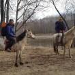 De yourte en yourte à cheval