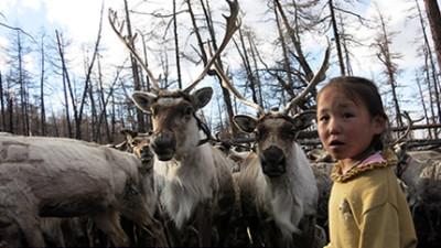 Rencontre avec les Tsaatans au nord de la Mongolie